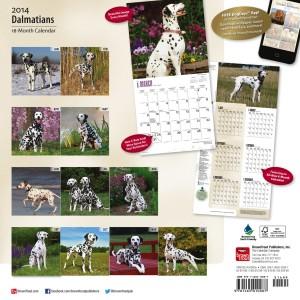 """Dalmatians 12"""" x 12"""" Square Wall Calendar"""