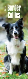 Border Collies 2018 Slim Calendar