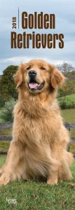 Golden Retrievers 2018 Slim Calendar