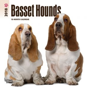 Basset Hounds 2018 7 X 7 Inch Monthly Mini Wall Calendar
