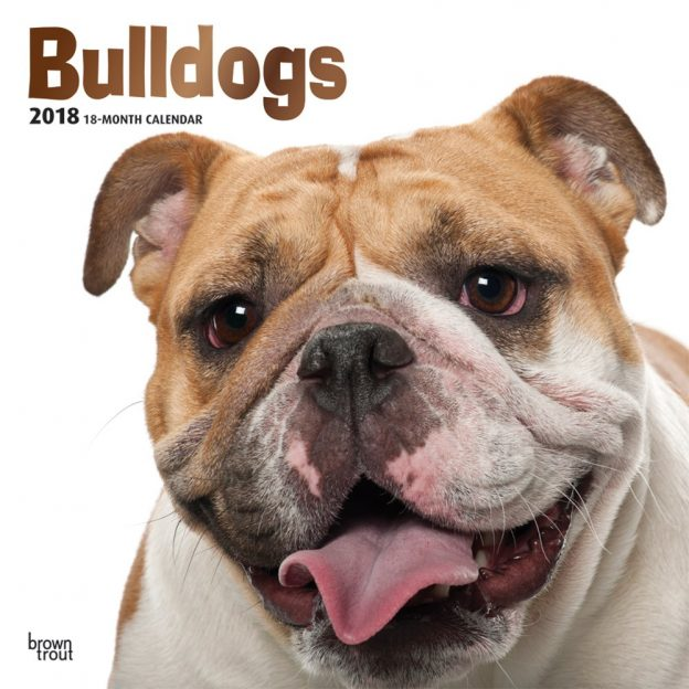 Bulldogs 2018 12 X 12 Inch Monthly Square Wall Calendar With Foil Stamped Cover