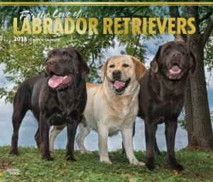 For The Love Of Labrador Retrievers 2018 14 X 12 Inch Monthly Deluxe Wall Calendar With Foil Stamped Cover
