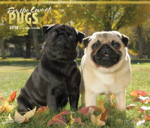 For The Love Of Pugs 2018 14 X 12 Inch Monthly Deluxe Wall Calendar With Foil Stamped Cover