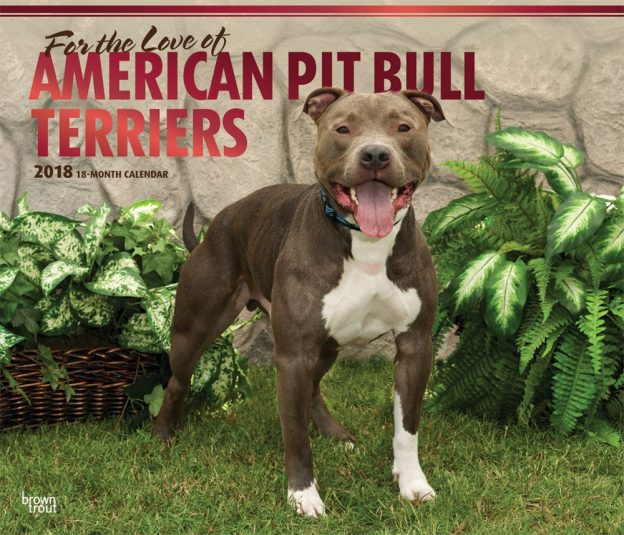 For the Love of American Pit Bull Terriers 2018