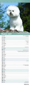Bichon Frise 2019 6.75 x 16.5 Inch Monthly Slimline Wall Calendar, Toy Dog Canine
