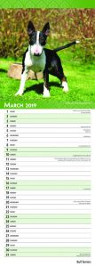 Bull Terriers 2019 6.75 x 16.5 Inch Monthly Slimline Wall Calendar, Dog Canine