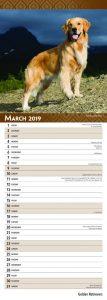 Golden Retrievers 2019 6.75 x 16.5 Inch Monthly Slimline Wall Calendar, Dog Canine Goldie