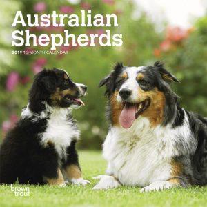 Australian Shepherds 2019 7 x 7 Inch Monthly Mini Wall Calendar