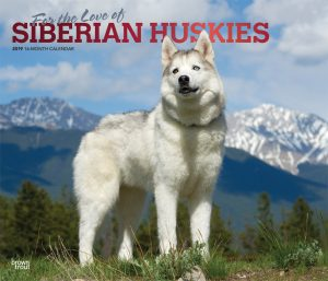 For the Love of Siberian Huskies 2019 14 x 12 Inch Monthly Deluxe Wall Calendar with Foil Stamped Cover